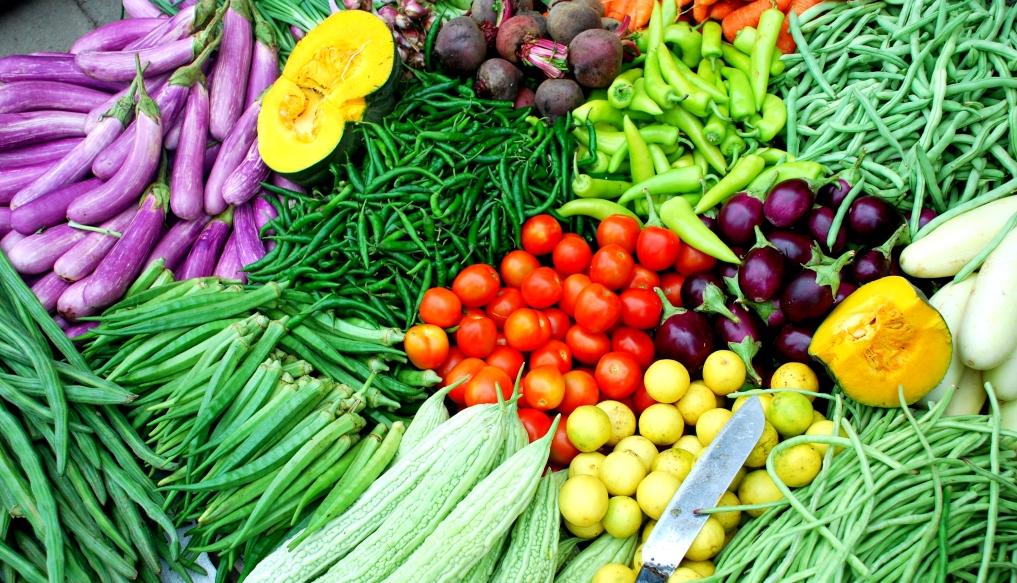 makanan-diet-sehat